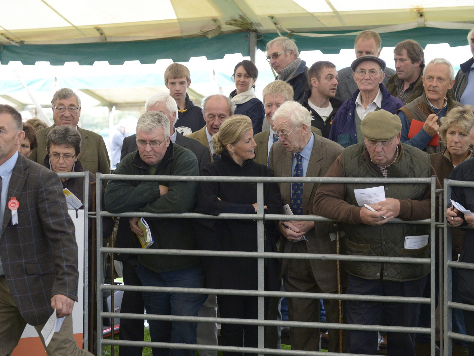 Kelso Ram sales, Buyers watching the sale over the fence.