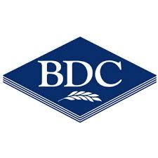 BDC Systems Ltd