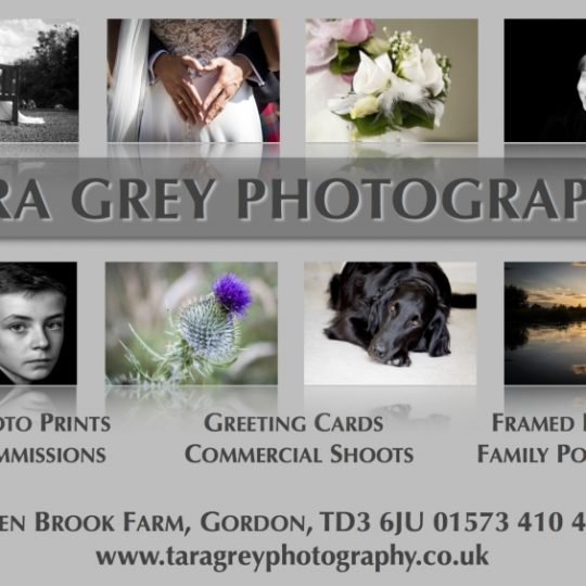 Tara Grey Photography