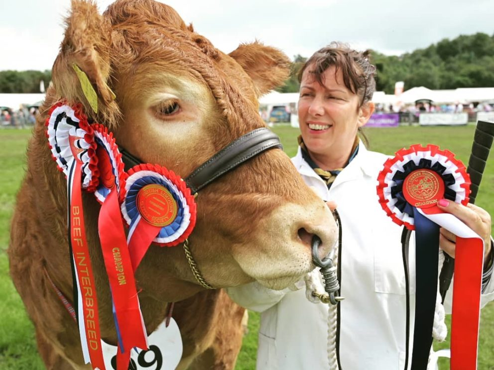 Border Union SHow Champion of Champions